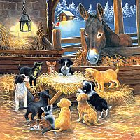 Barnyard Nativity 500pc