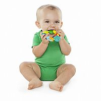 Bright Starts: Buggie Bites Teether