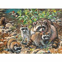 Raccoon Family (Family Puzzle) 350pc