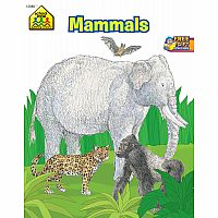 Mammals Science Workbook