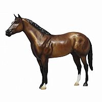AQHA 75th Anniversary Edition - Bay