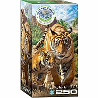 Save Our Planet: Tigers 250pc