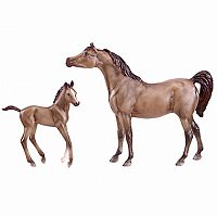 Arabian Horse and Foal