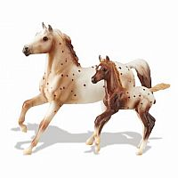 Chestnut Semi-Leopard Appaloosa Stallion & Chestnut Blanket Appaloosa Foal