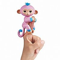 Fingerling Two Tone Monkey Gandi