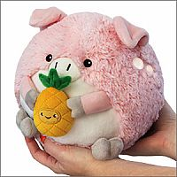 Mini Pig Holding Pineapple