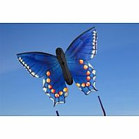 "Butterfly Swallowtail Blue ""L"""