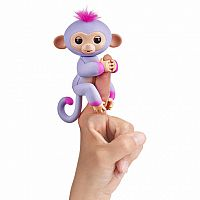 Fingerling Two Tone Monkey Sydney